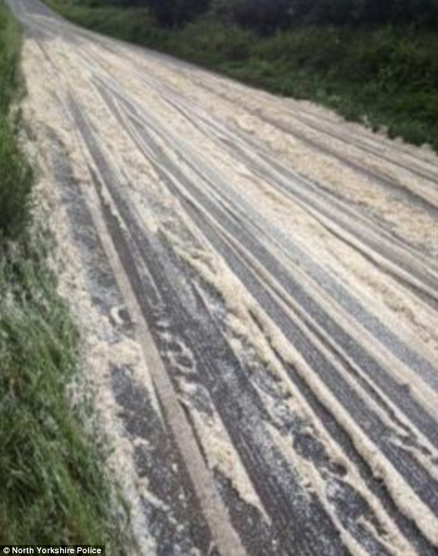 Police were forced to close the road after the lorry shed its load of instant mash potato on the A64 in North Yorkshire. Officers said the lorry shed about a quarter of its load in the incident which caused huge tailbacks