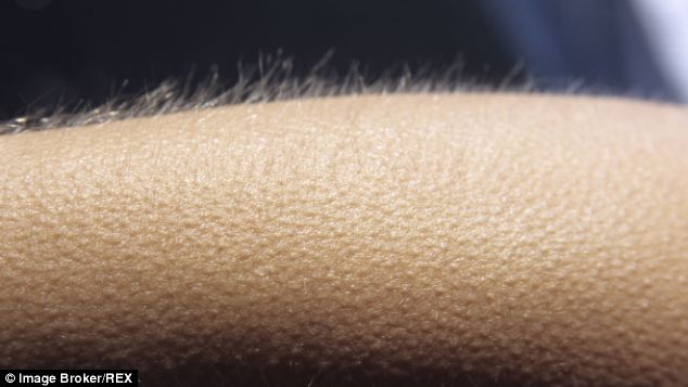 The goosebumps have it: Researchers say the shape as size of goosebumps can give away our emotional state