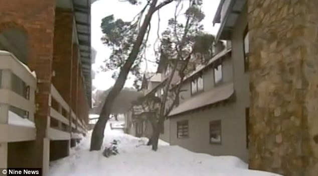 Haadi had been playing with a snowman with his family at Mt Buller when Haadi wandered off and was struck by a piece of falling snow from the roof of their apartment