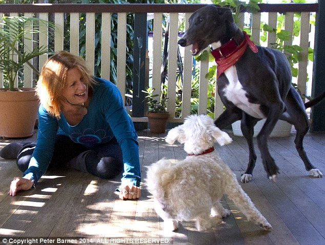 Lolly, the greyhound, loves to dance to Bowie, while Maltese cross, Moses, prefers an Irish jig