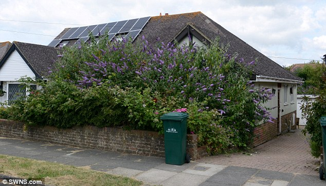 Overgrown: Police visited this suburban house in Brighton after its owner died, where they found the weapons