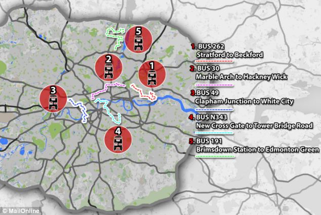 The top five bus routes include the number 262, 30, 49, n343 and 191 - routes for which pictured above
