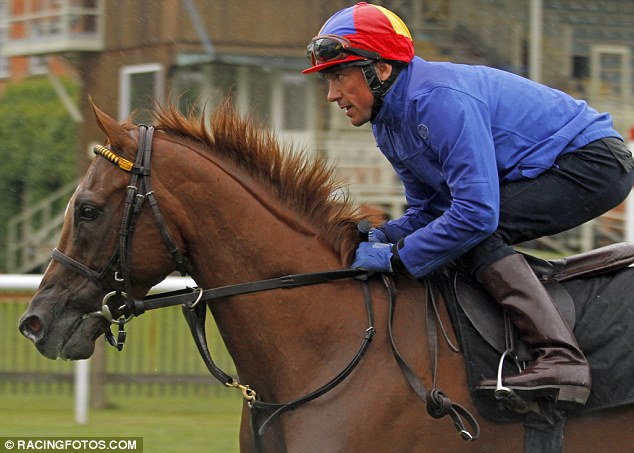 Raider: American challenger for the July Cup Undrafted is ridden by Frankie Dettori as he gets a feel for the July Course at Newmarket