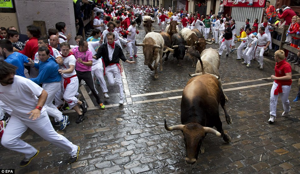 High octane: Fighting bulls from the Fuente Ymbro ranch run through the old cobbled streets of Pamplona