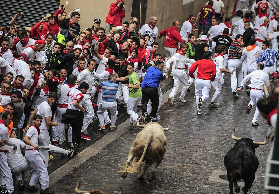 Thrill-seekers: The run takes revellers from Santo Domingo street to the bull ring as part of the San Fermin festival