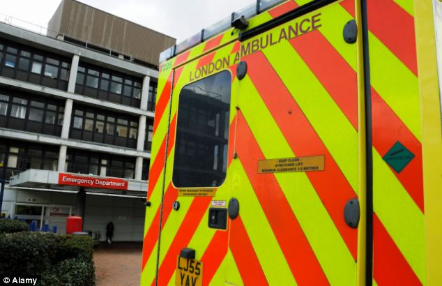 Emergency: A staggering 102 youngsters were admitted to A&E departments across England for excessive consumption of alcohol last year. They were among 2,084 under-15s - more than five per day - to be admitted