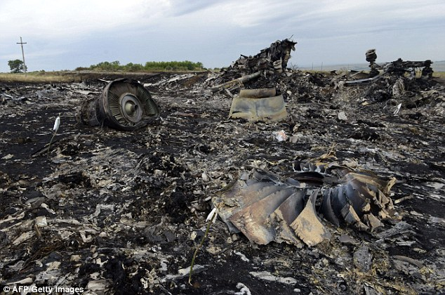 The crash site of the Malaysia Airlines Boeing 777 flight in eastern Ukraine