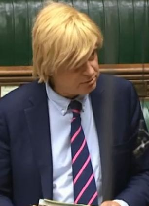 Challenge: Michael Fabricant makes his claim - and John Bercow reacted to the allegation incredulously