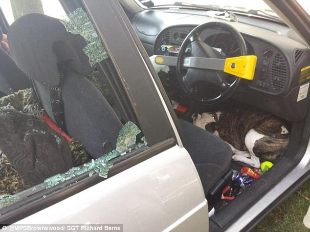 Police were forced to smash the windows of this car to free a dog found cowering beneath the wheel without any water on the hottest day of the year