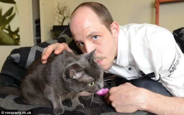 Playtime: Mr Denyer says it's important to spend at least 20 minutes a day playing with your cat to understand them