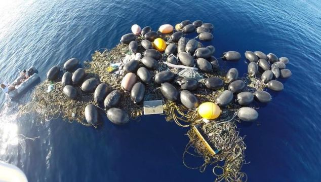 Bouy Island, where the team say an underwater ecosystem is developing around the tsunami waste.