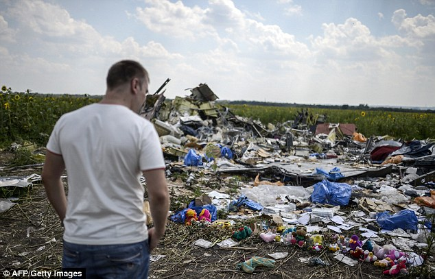 Wreckage: A man looks at the debris scattered at the crash site of the downed Malaysia Airlines flight MH17, in a field near the village of Hrabove in the rebel-held Donetsk region of Ukraine