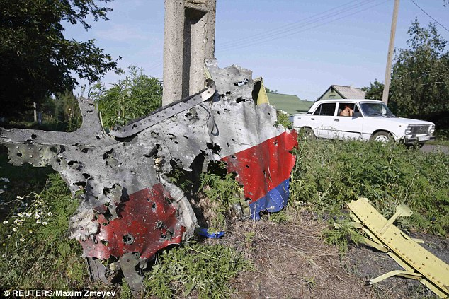 A piece of the wreckage of the Malaysia Airlines Flight MH17 near the village of Petropavlivka
