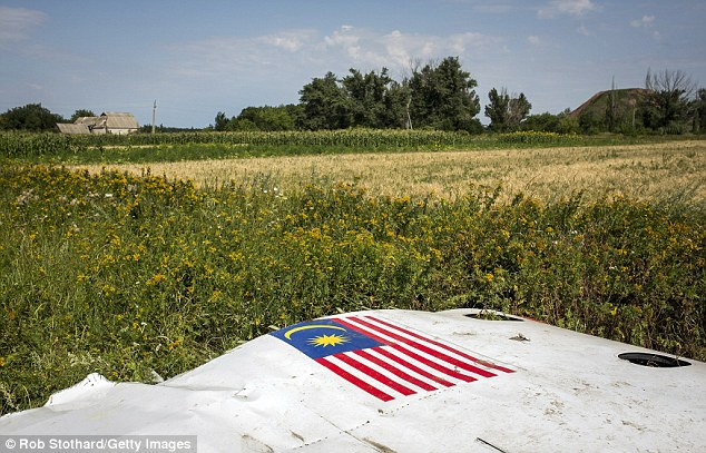 A piece of the wreckage of  MH17 bearing the Malaysian flag lies in a field near Petropavlivka