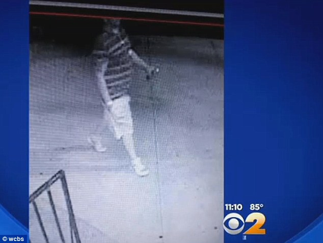 Suspect: This is believed to be the vandal, captured here on surveillance cameras carrying what appears to be a can of spray paint