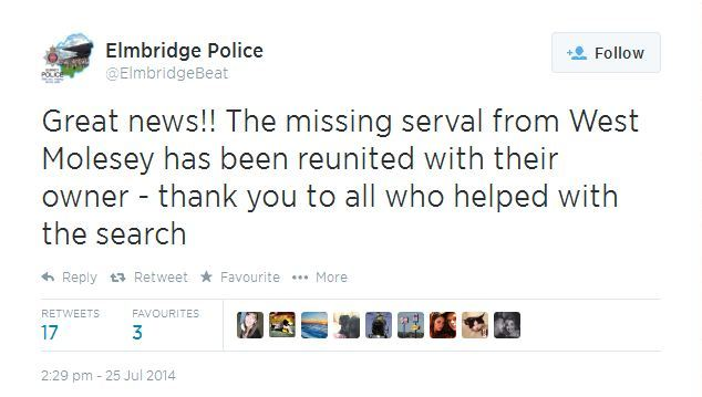 Found: Elmbridge Police tweeted Great News!!! The missing serval from West Molesey has been reunited with their owner - thank you to all who helped with the search