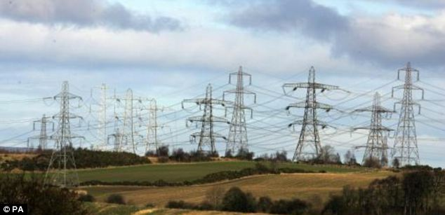Mounting costs: The British Gas results follow renewed pressure over the mounting cost of household energy bills from watchdog Ofgem. Yesterday, the regulator released figures estimating that that energy suppliers' profits would double in the coming year to £106 per customer