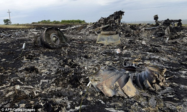 The wreckage of Malaysia Airlines flight MH17 at the Ukrainian crash site where international experts are now looking through for more remains