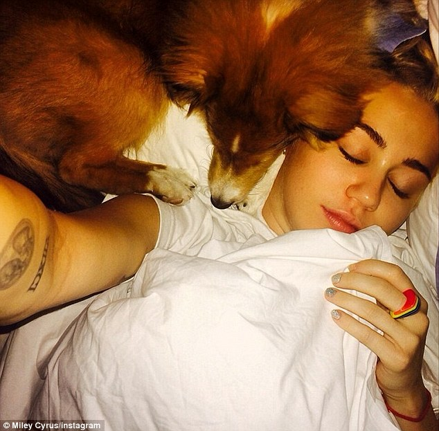 Adorable: While laying in bed half asleep, the singer took a selfie with her furry pal laying next to her face