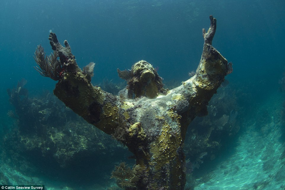 Haunting: A submerged statue of Jesus Christ is covered in corals off the coast of the Florida Keys in the US