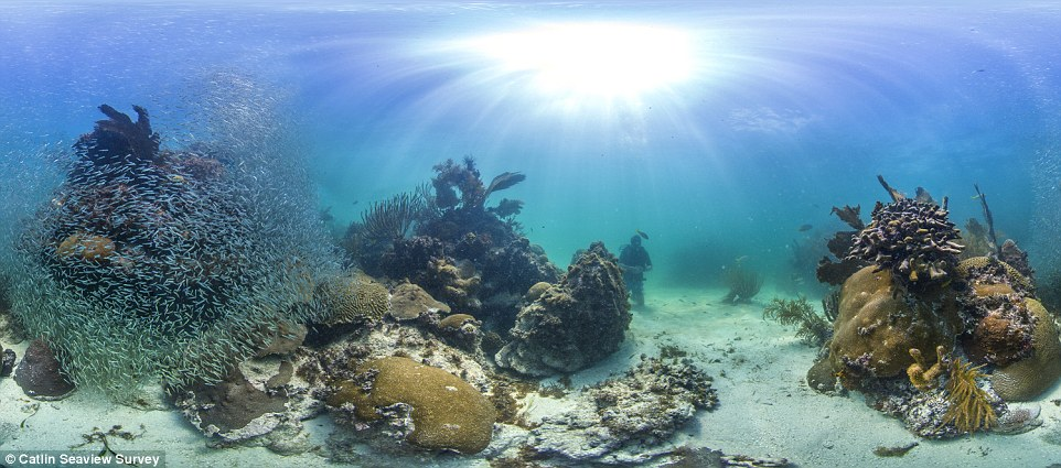 Back to school: Scientists are learning how to use an underwater camera to map theFlorida Keys National Marine Sanctuary