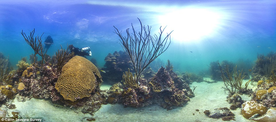 New depths: Catlin Seaview Survey has already mapped portions of Australia¿s Great Barrier Reef and underwater mountains off Galapagos Islands in South America