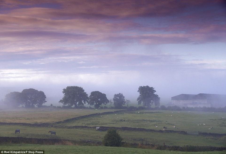 Morning calm: A misty dawn breaks over farmland in Sparrowpit, Derbyshire Peak District, ahead of forecast heavy rain