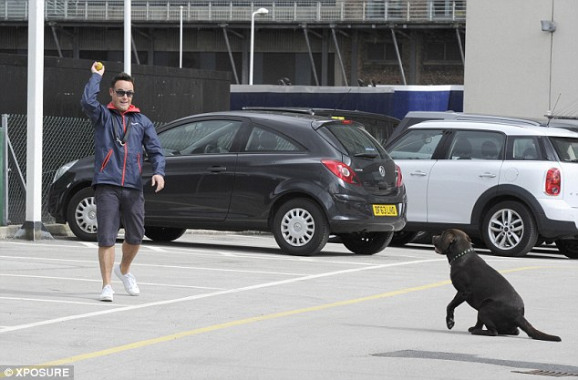 Go fetch: The X Factor entertainer throw a soft ball towards his dog