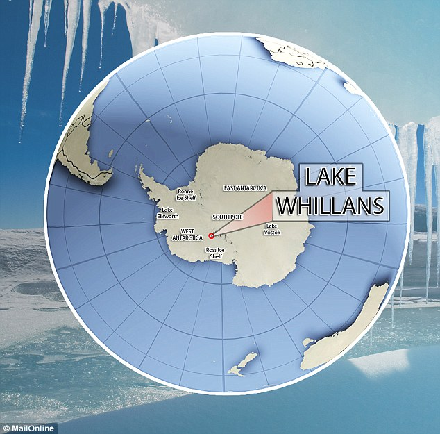 The team drilled through half a mile of ice to reach the sub-glacial Lake Whillans in January last year