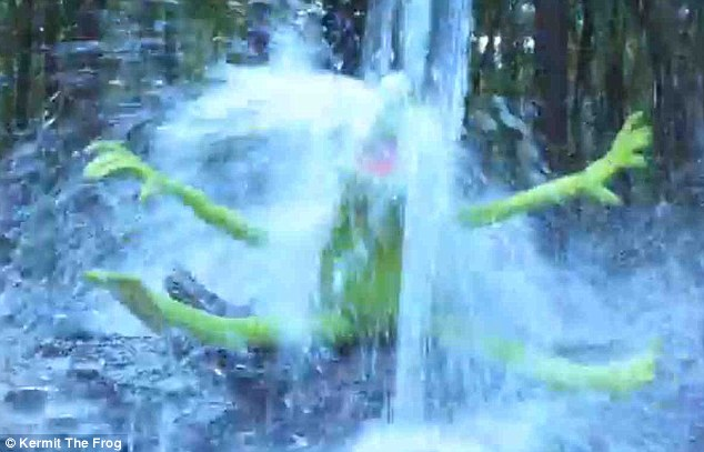 Yikes! Even Kermit The Frog took part in the ice bucket challenge