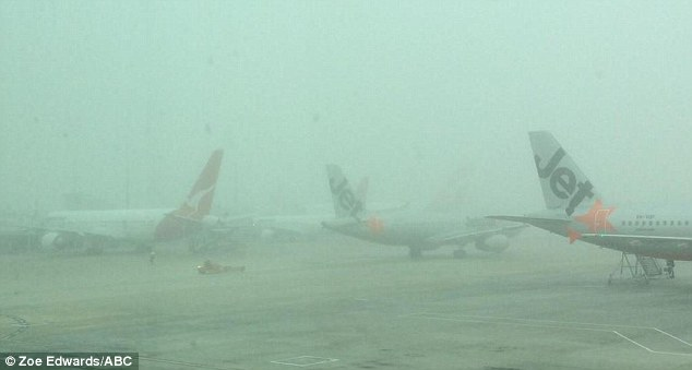Covered: The planes at Melbourne airport are barely visible through the fog that set in on Friday