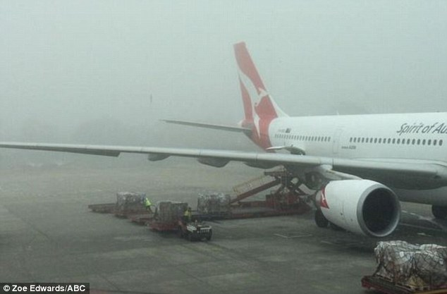 Planes were grounded on Friday morning at Melbourne airport