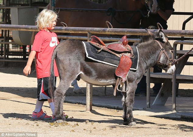 More his size: Afterwards, Zuma found a donkey that he could more easily ride