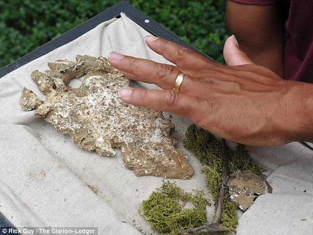 Discovery: Peyton Lassiter shows the cast he made from a large footprint he found near to a wooded area in Vicksburg, Mississippi. He said the ridges on the footprint mean it was not made by a bear