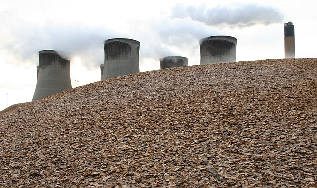 New product: AEG is working on a fuel granule solution that will enable coal-fired power stations, such as Drax, to switch directly to biomass