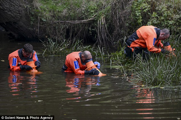 A specialist sub-aqua team searched the River Beaulieu in a bid to find the knife used by Mrs Davis' killer(s)