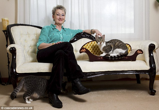 animal lover kim manners designs range of rocking chairs ForCat Chaise Lounge Uk