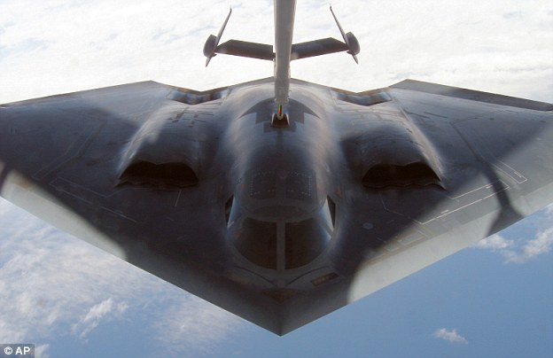 The B-2 Spirit Stealth Bomber (Cross-Sections)-ExLibrary