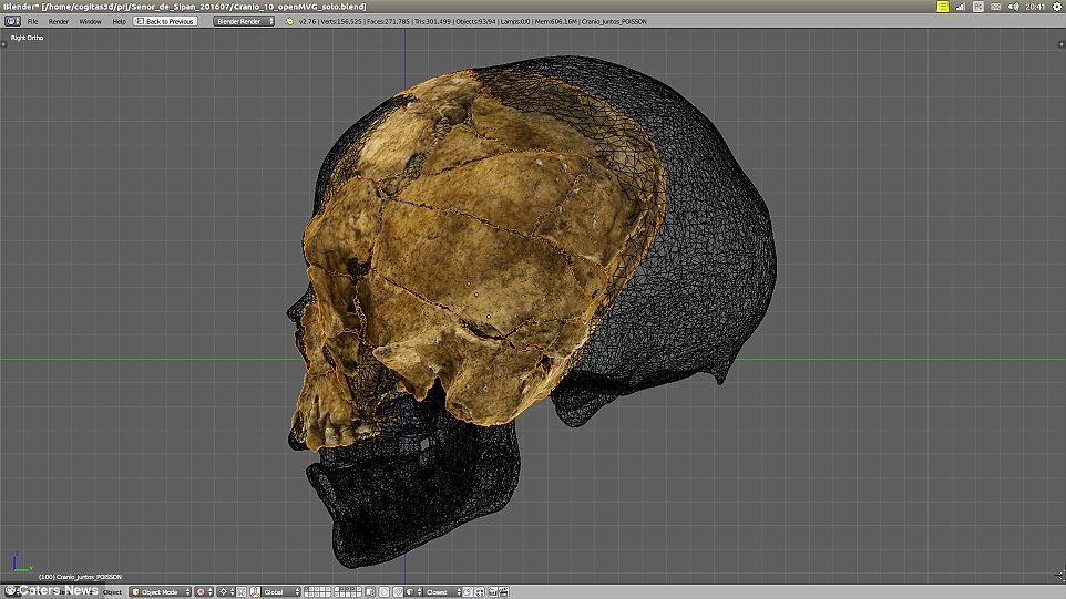 A similar sized skull was used as a 3D reference to expand the crushedLord of Sipán's skull back to its original shape