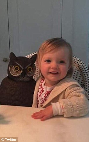 Pat Tobin wrote: 'Most kids have a stuffed animal or blankie. My niece has one of those plastic owls u put outside to scare away birds'