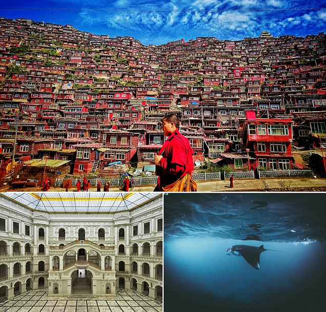 Breathtaking images of Buddhist monks and a lone manta ray compete for honours in the