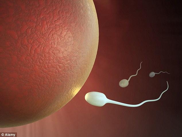 Congratulate, Women using the same sperm bank urbanization any