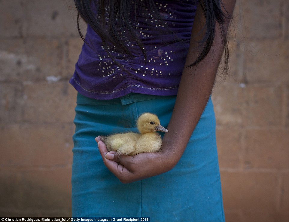 Gloria, 13, holds a duckling at her home in Maluco, a small village in Mexico's Oaxaca state. Gloria lives with her mother and eight of her 10 siblings, who are between four and 20. Gloria became a mother at the age of 12, a consequence of sexual abuse by her father who has also attacked two of her sisters, aged eight and 16