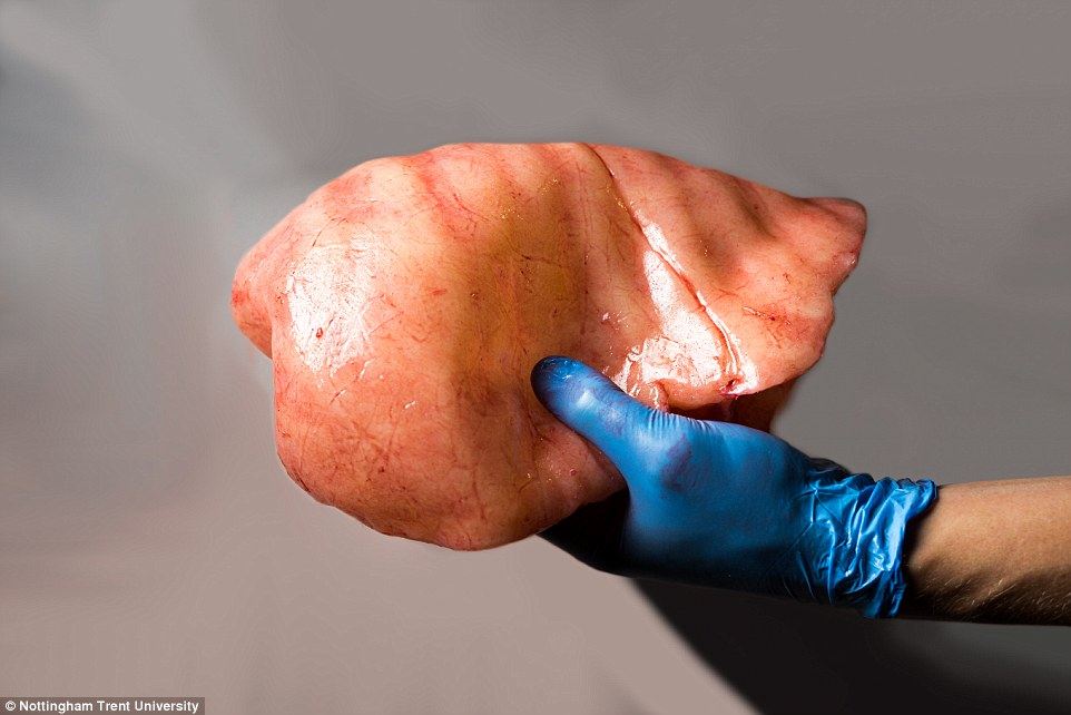 Creepy human replica could train future surgeons: 3D ...